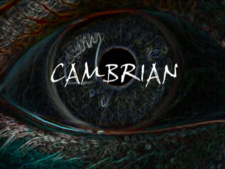 Animex: Cambrian