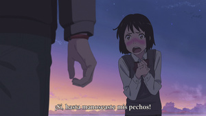 Hakoniwa, Zenryoku Fansub: Your Name.