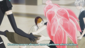 Anacrónico Fansub, Fictional Movement: Houseki no Kuni (TV)
