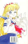 ?: Sailor V