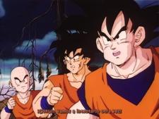 EvoShare: Dragon Ball Z - Película 3: Superbatalla decisiva por la Tierra